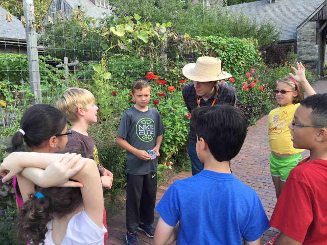 Main Street School fourth-graders visited the Stone Barns Center in Pocantico Hills to investigate food production and examine the relationship between farm life and how the harvested food becomes the food we consume.