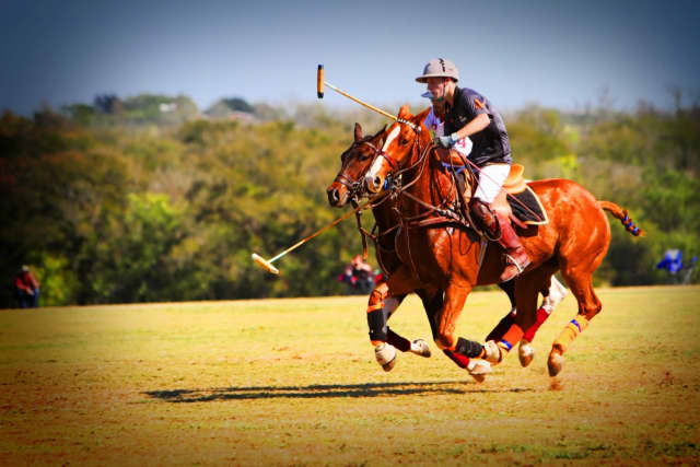 The annual Victory Cup polo event will take place at Kirby Hill Farm in Pawling on Saturday, July 16.