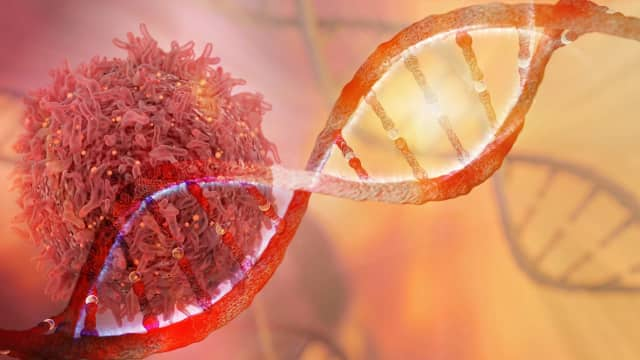 NewYork-Presbyterian is changing the way cancer treatment begins by looking towards the body's own immune system to fight the disease.