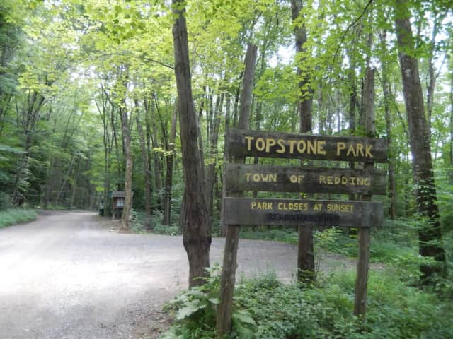 Redding's animal control officer is looking into a reported dog-biting-dog incident at Topstone Park Tuesday morning.