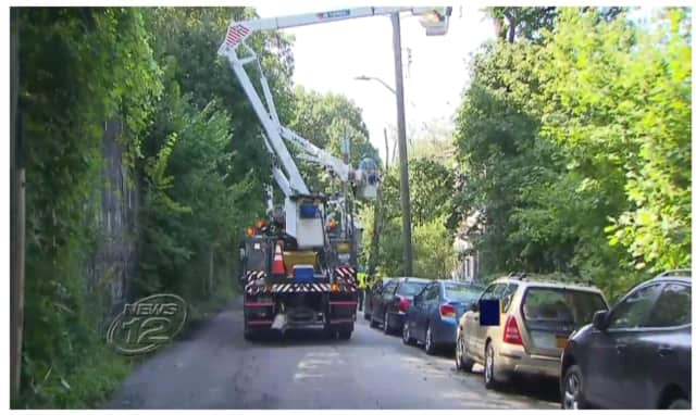 A tree fell on a car and damaged power lines and a transformer early Friday in Yonkers, leaving 858 customers without power, News 12 Westchester reports.