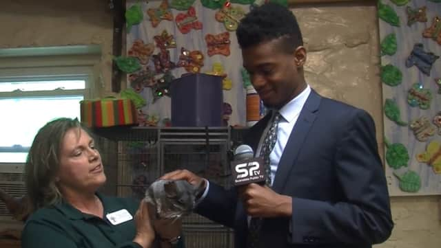 "Cindy Polera, head naturalist at the Weinberg Nature Center, shows ""Senior Options"" host Anito Akuetey a chinchilla, one of the many exotic animals housed at the center."