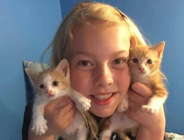 Willow Phelps of Ringwoodis raising money to help animals at the Mt. Pleasant Animal Shelter.