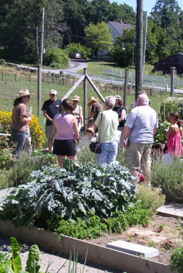 Hilltop Hanover Farm will sponsor a class in using herbs to boost your immune system.