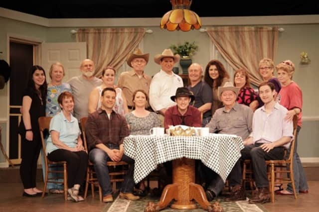"The cast of ""The Rainmaker"" which is being performed at the Antrim Playhouse in Wesley Hills."