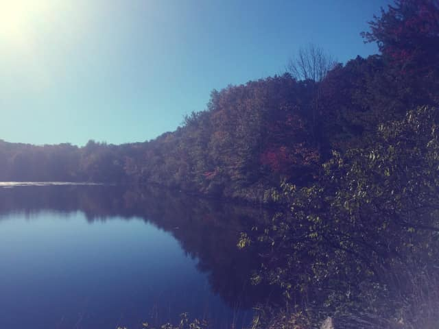 Sunny, crisp and cool--with leaves just starting to change. No doubt about it, autumn has arrived at Horseshoe Pond in Wilton, Conn.