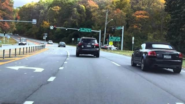 A large white dog was spotted running across the busy Bear Mountain State Parkway in Cortlandt Manor Thursday morning. A concerned motorist posted an alert on Lost Pets of Westchester's website in the hopes the pooch will be reunited with its owners