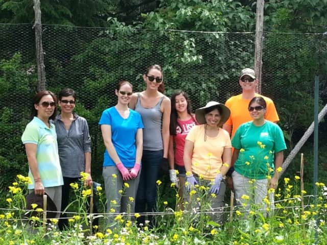 Volunteers are needed to help with a large planting and landscape remodel at Sugar Hill Farm this Thursday.