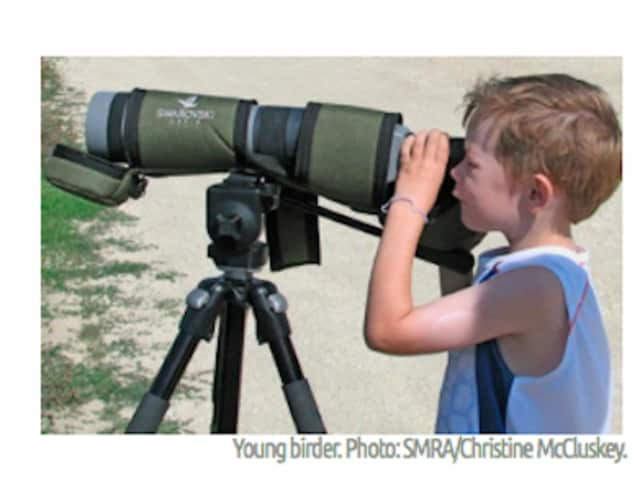Come birding with the Saw Mill River Audubon in Chappaqua. Beginners are encouraged.