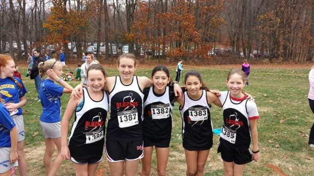 The New Canaan Blazers ran at the Connecticut Middle School Cross Country Championships Nov. 7.