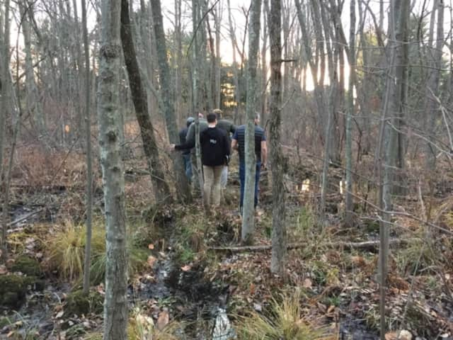 New Canaan Land Trust recently received a gift of an 8.25-acre wildlife sanctuary off Smith Ridge Road.
