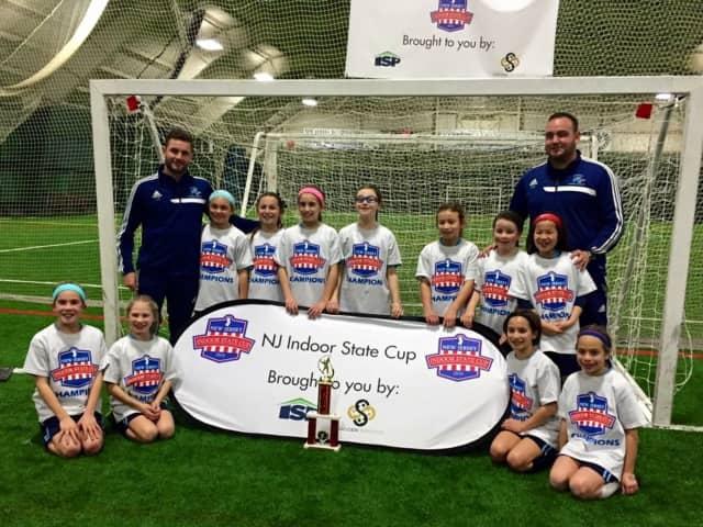 Bulldogs Soccer Academy will offer free birth year training.