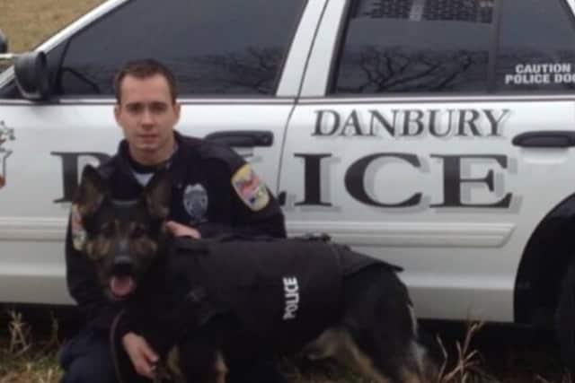 A GoFundMe has been set up for Danbury Police K-9 Koda, who has a brain tumor.