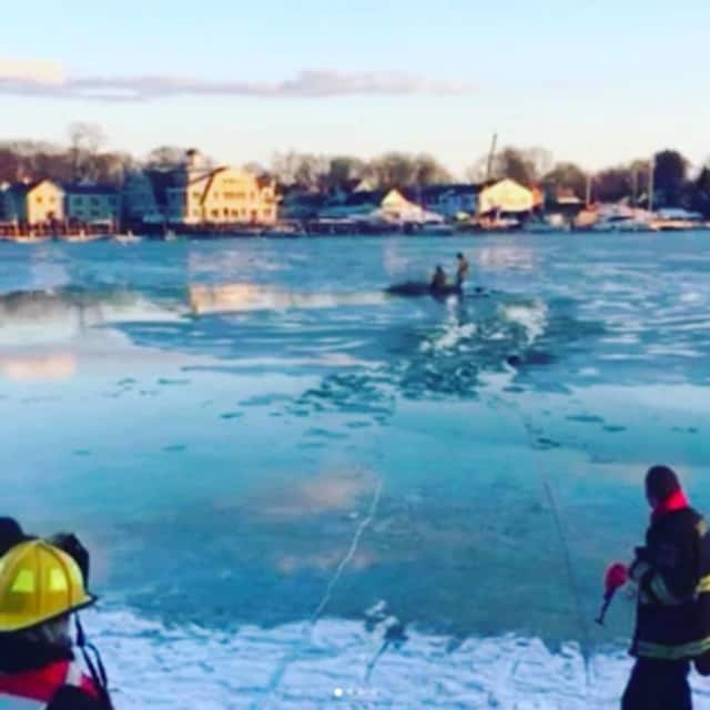 A dog was rescued from Five Mile River in Darien on Tuesday
