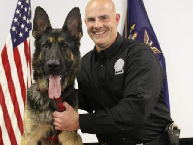 K-9 Roscoe will be transferred to the state Fire Academy after killing a local dog.