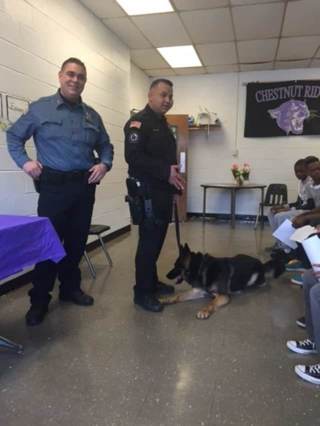 Ramapo police officers Omar Olayan, Andres Sanchez and K-9 partner, Rookie pay a Career Day visit to Chestnut Ridge Middle School.