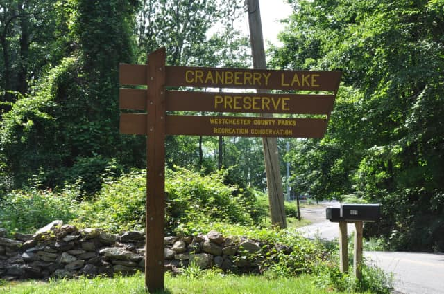 Residents can take a break from shopping and visit the Cranberry Lake Preserve to snowshoe, take a walk on the trails or make a craft.