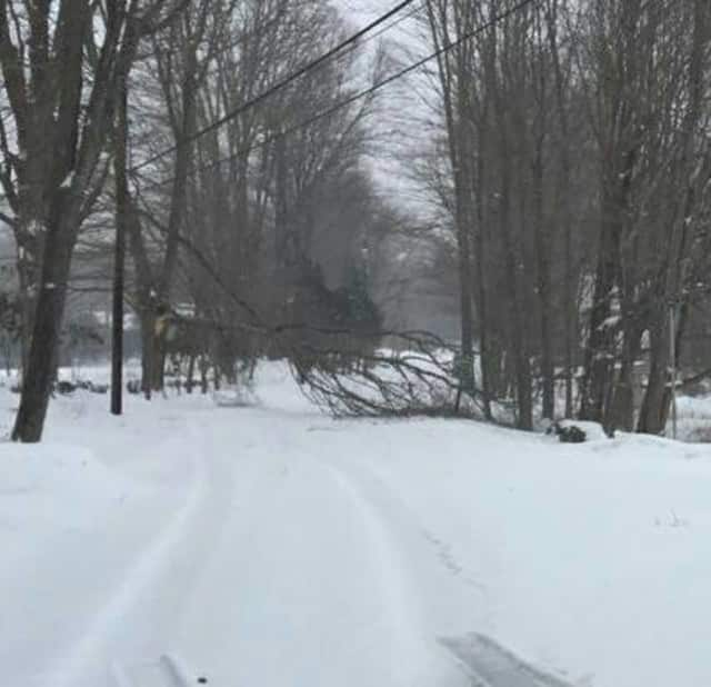 Silver Hill Road in Easton was closed around 1 p.m. due to a fallen tree in the snow storm.