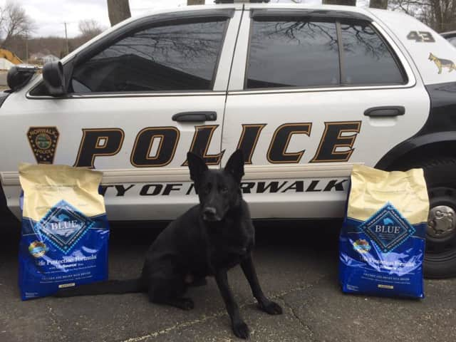 The Norwalk Police Department K9 Unit has a Wilton pet food company to thank for its next meal.