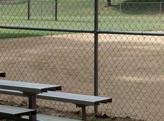 Wayne could get a state grant to help the township build new ball fields.