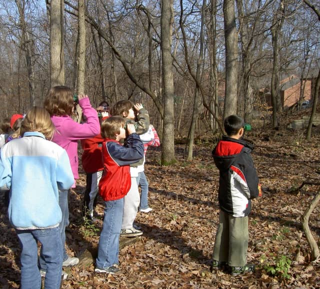 Closter Nature Center will allow participants of all experience levels participate in Bergen County Audubon's annual winter bird count.
