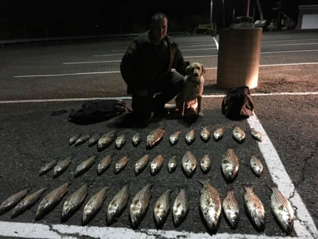 State DEEP police charged four men with catching too many fish in Shelton that also undersized.