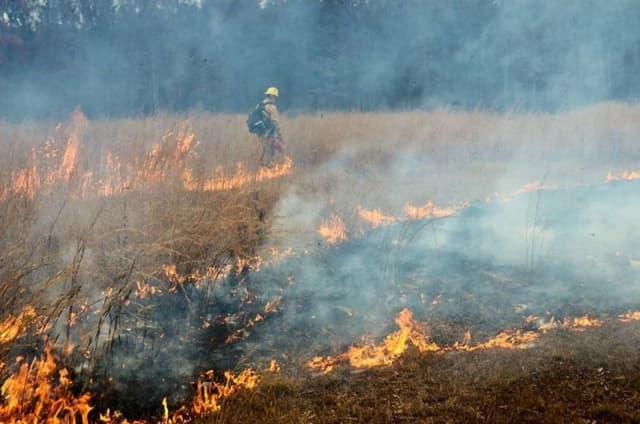 Monday's burning in Fort Indiantown Gap.