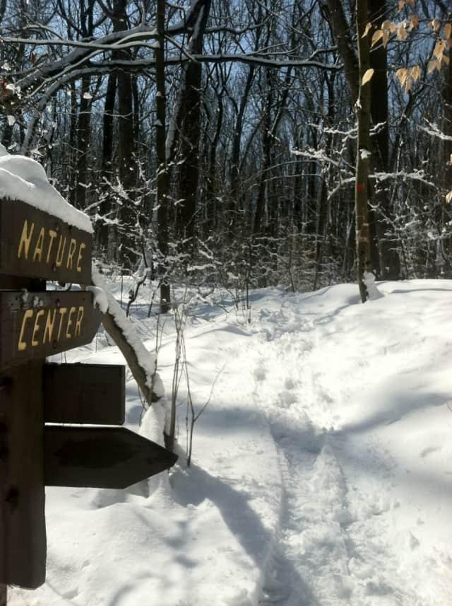 Flat Rock Brook Nature Association will host a children's winter camp starting Feb. 16.
