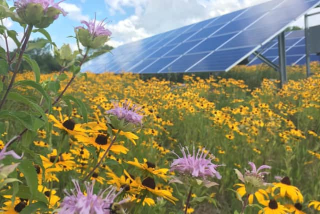 A solar array with a pollinator garden. This and other green initiatives will be highlighted at Bedford 2020's Climate Action Summit.