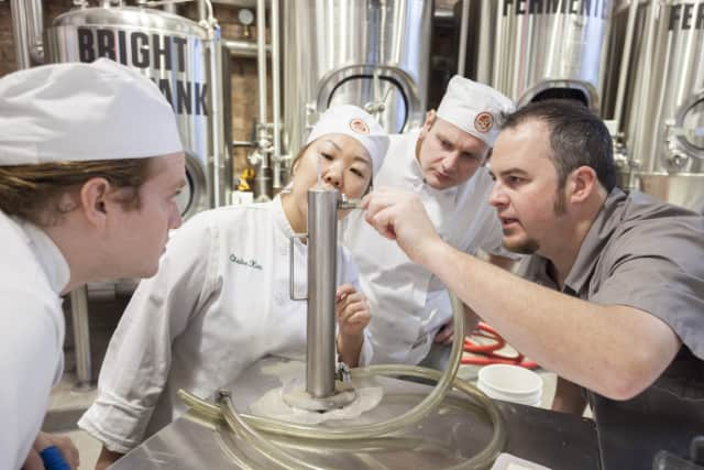 The CIA has introduced the first three beers brewed on its Hyde Park, N.Y. campus as part of the culinary college's new Art & Science of Brewing elective.