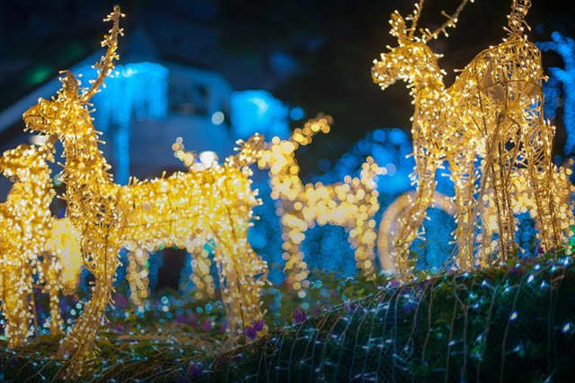 The county's holiday light show at Turtle Back Zoo returns in late November