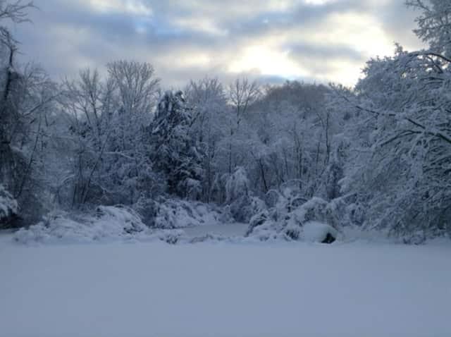 A snowy backyard in Ridgefield, Conn. following the storm.