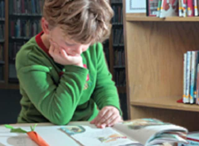 The books to be discussed will be available in the children's room after participants register on the library's website.