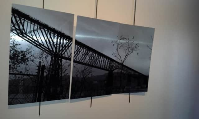 Photographer Dave King's images on aluminum plates, and black and white photographs by Diedre Kenny and Natalie Frankel, will be on display at the Cunneen-Hackett Arts Center in Poughkeepsie until early June.