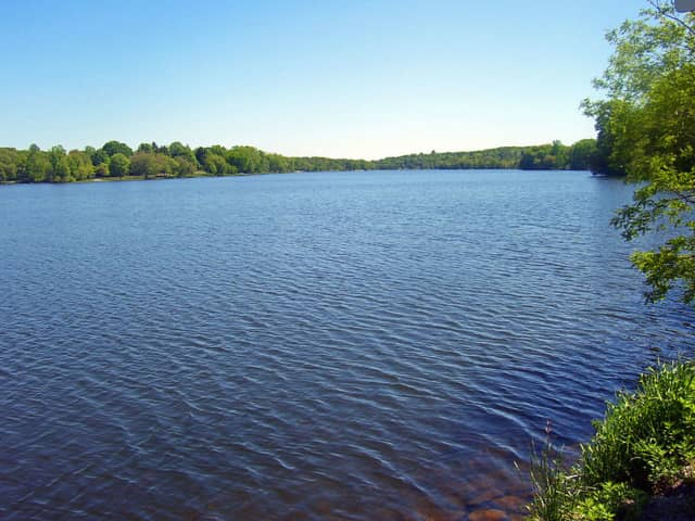 Lake Carmel is getting funding to help clean out algae.