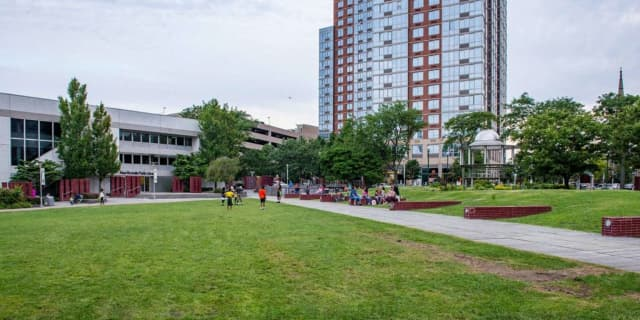 A body was found at the New Rochelle Library Green