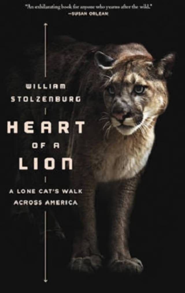 """Westmoreland Sanctuary will host """"Heart of a Lion: A Lone Cat's Walk Across America"""" on May 21."""