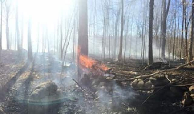 A brush fire in Somers Wednesday threatened several homes and burned up five acres before it was put out.