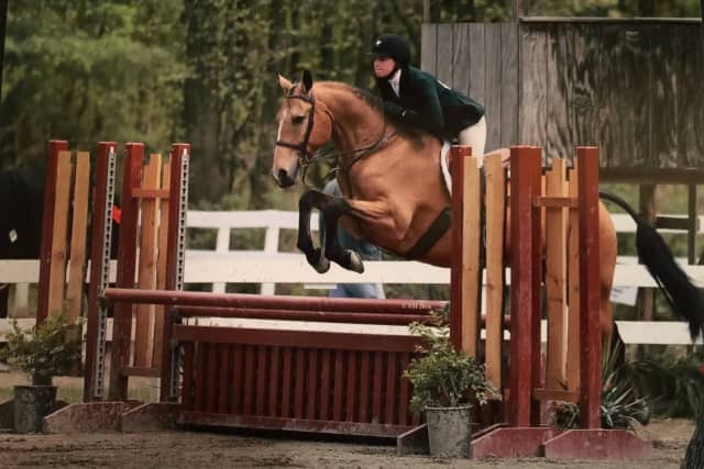 Maeve Cruikshank of Rhinebeck High School has competed in horse shows since she was young.