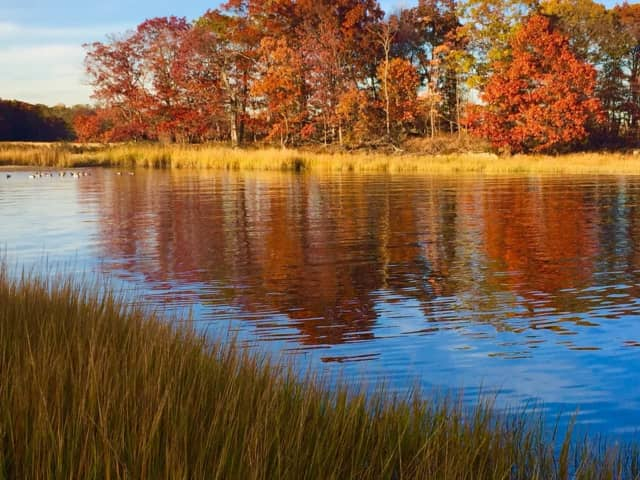 Marshlands Conservancy is a popular spot for Rye residents.