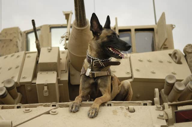 Jackson sits on an armored vehicle in Iraq in 2007, before heading out on a mission.