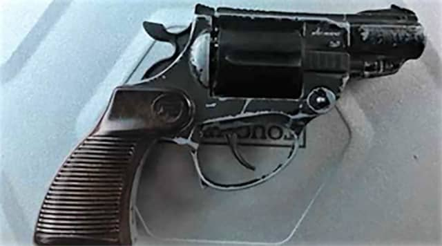 Newark police released a photo of the pellet gun.