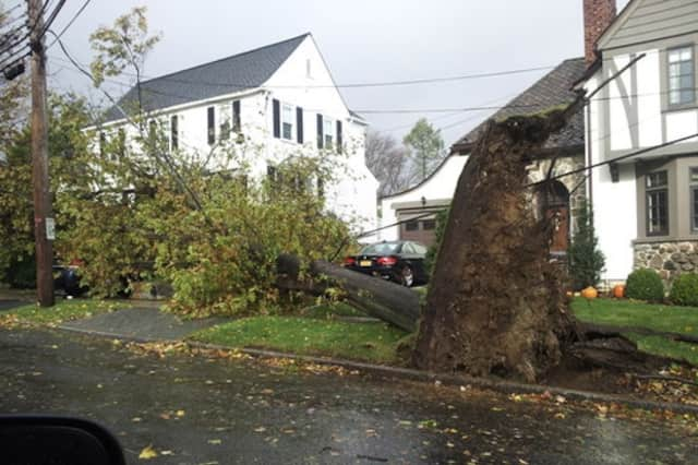 Harrison has received a $370,000 grant from FEMA to help cover the cost of the Hurricane Sandy cleanup.