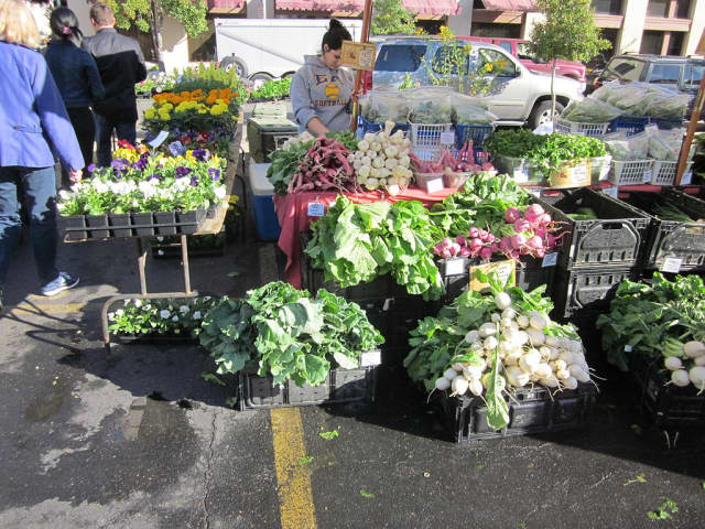 The Down to Earth farmers market