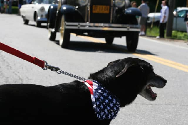 North Salem's annual Memorial Day festivities topped the news this week.