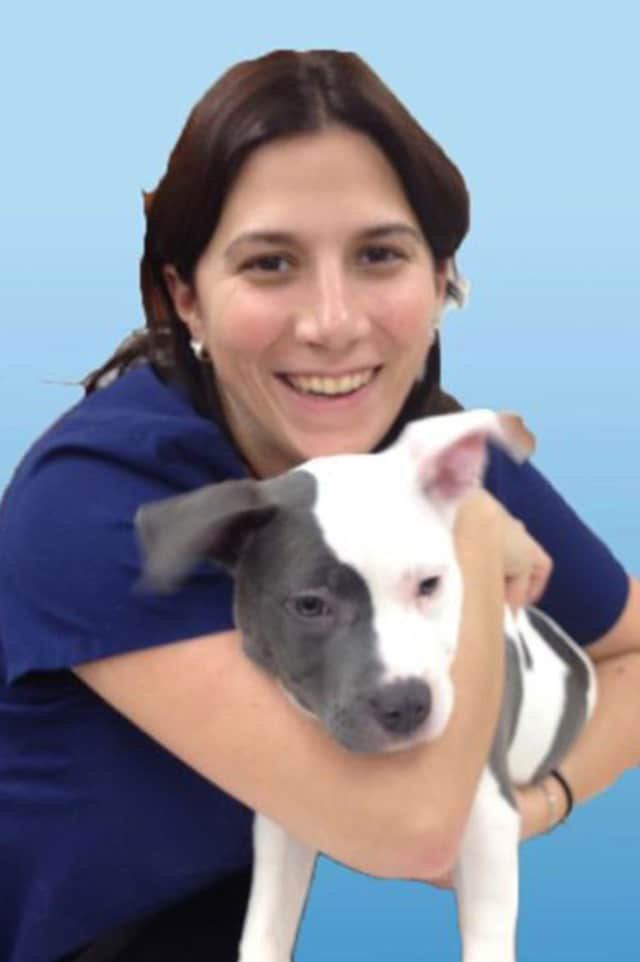 Dr. Melissa Watson has joined the staff at the Pound Ridge Veterinary Center.