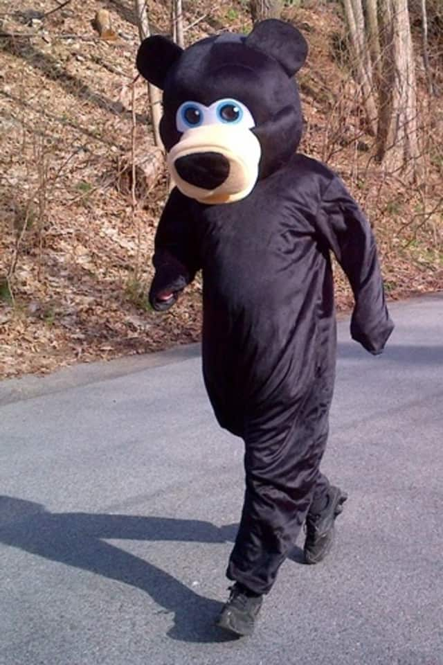 Kai Madden has taken on an unusual challenge: to compete in the Tough Mudder obstacle course in a full bear costume. The challenge is part of his efforts to raise money for Animals Asia's Vietnam Bear Rescue Center.