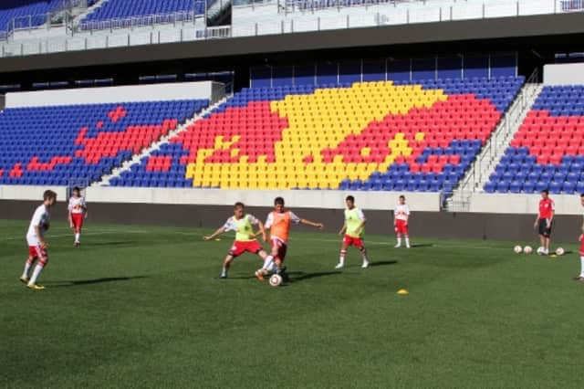 Dobbs Ferry will sponsor a Red Bulls soccer camp in June.