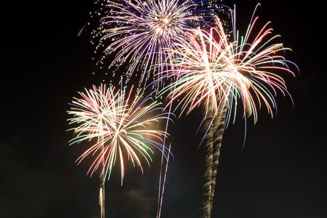 Dobbs Ferry will host a picnic and fireworks t celebrate Independence Day.