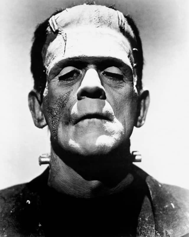 """Frankenstein will be the centerpiece of a communitywide, monthlong event in October called """"Pelham Reads."""""""